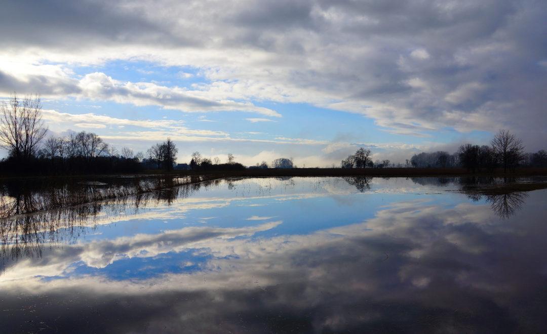 Nach dem Regen in Mühlau